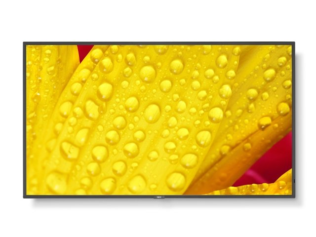 MultiSync E241N black